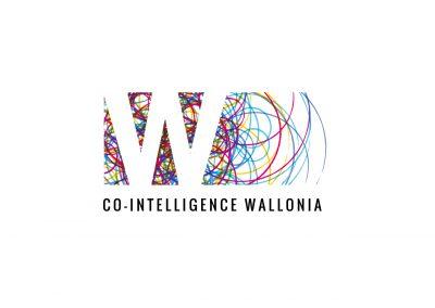 Co-Intelligence Wallonia