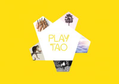 vei_playtao_elements
