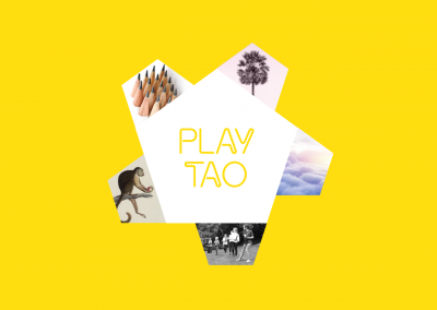vei_playtao_elements